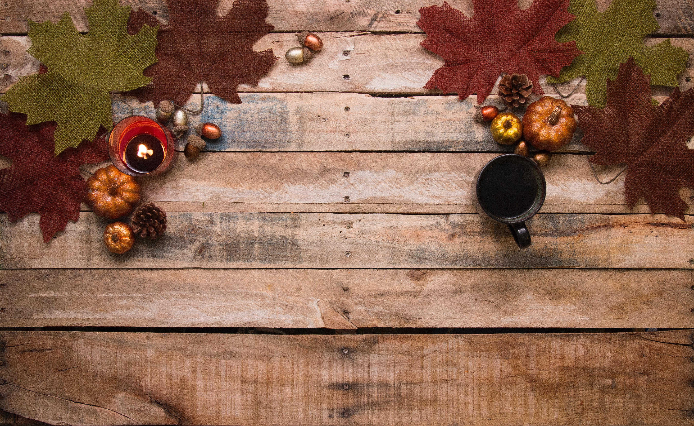 Acorns Autumn Autumn Decoration 730286